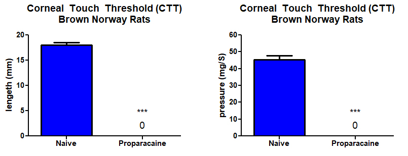 corneal sensation with sedation