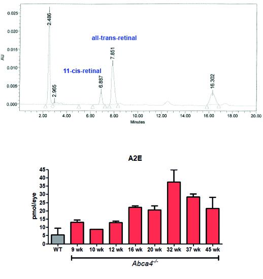 retinoid and A2E quantification