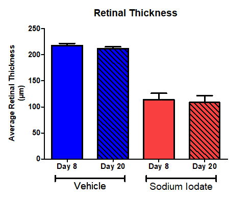 Retinal thickness in NaIO3 model
